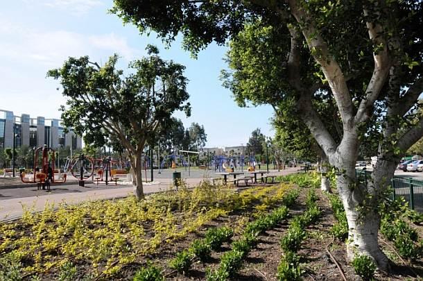 פארק אסתר בקרית ביאליק (צילום: אתר העירייה)